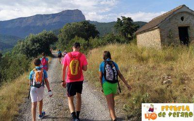 Becas para realizar prácticas en la «Escuela Polideportiva de Verano 2021»